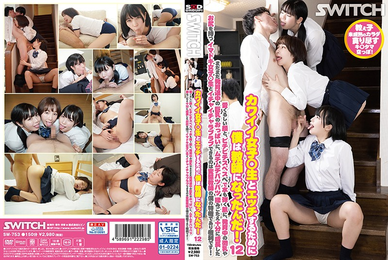 SW-753_cover