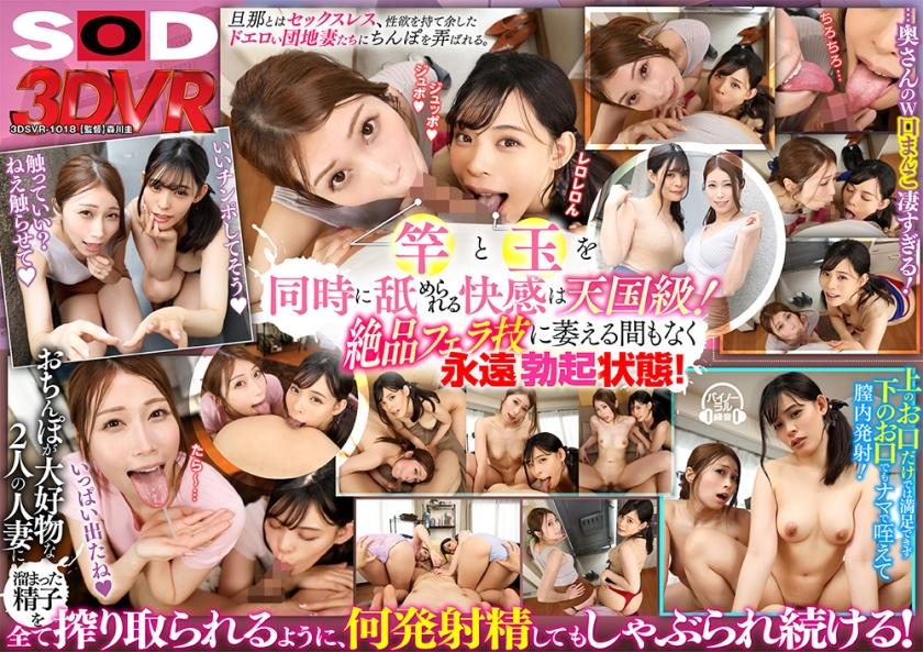 3DSVR-1018_cover